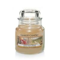 Lumanare Parfumata Borcan Mic Wild Sea Grass, Yankee Candle