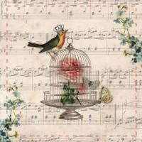 """Felicitare """"Bird Cage"""", Clayre & Eef"""