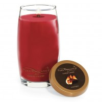 Lumanare Parfumata Pure Radiance Large Emberlight + Suport Lumanare CADOU, Yankee Candle