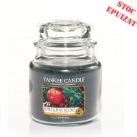 Lumanare Parfumata Borcan Mediu Apple & Pine Needle, Yankee Candle