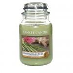 Lumanare Parfumata Borcan Mare Lemongrass & Ginger, Yankee candle
