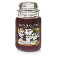 Lumanare Parfumata Borcan Mare Madagascan Orchid, Yankee Candle