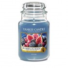 Lumanare Parfumata Borcan Mare Mulberry & Fig Delight, Yankee Candle
