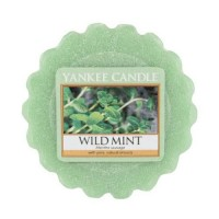 Tarta Pafumata Wild Mint, Yankee Candle