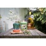 Lumanare Parfumata Borcan Mediu Olive & Thyme, Yankee Candle