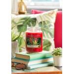 Lumanare Parfumata Borcan Mediu Tropical Jungle, Yankee Candle