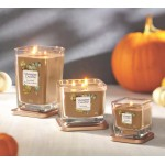 Lumanare Parfumata Elevation Collection Borcan Mediu Harvest Walk, Yankee Candle