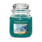 Lumanare Parfumata Borcan Mediu Icy Blue Spruce, Yankee Candle