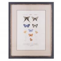 """Tablou """"Butterflies"""", Clayre&Eef"""