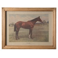 "Tablou ""Horse"", Clayre&Eef"