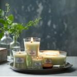 Lumanare Parfumata Borcan Mic Fig Leaf and Tuberose, WoodWick®