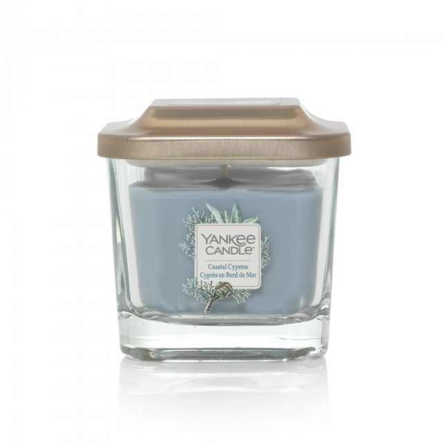 Lumanare Parfumata Elevation Collection Borcan Mic Coastal Cypress, Yankee Candle