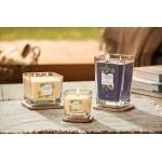 Lumanare Parfumata Elevation Collection Borcan Mare Fig & Clove, Yankee Candle
