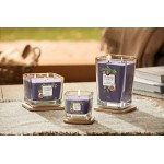 Lumanare Parfumata Elevation Collection Borcan Mediu Fig & Clove, Yankee Candle