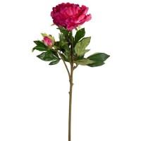 Floare decorativă bujor