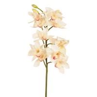 Floare decorativă orhidee