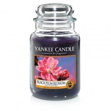 Black Plum Blossom Large Jar