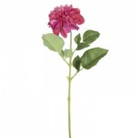 Floare decorativa dalie